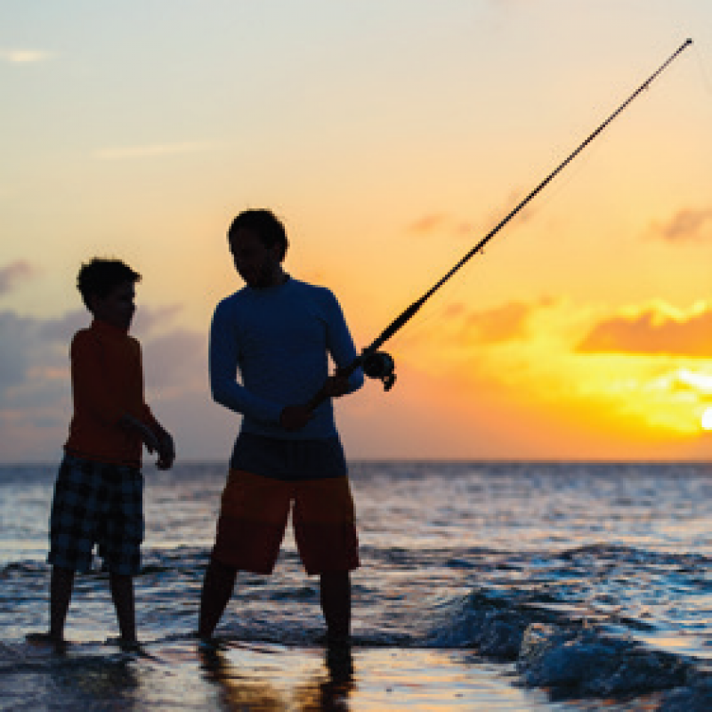 Fishing Rods + Reels  - Boat rods & reels, Beachcaster rods & reels & Jetty bashers!